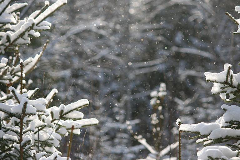 lunta-ja-aurinkoa